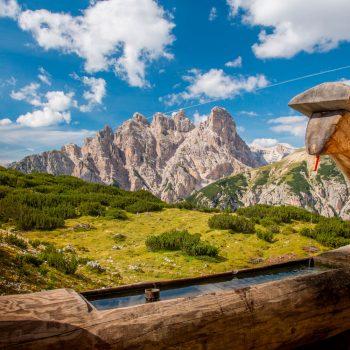Wochenende nach Südtirol zum Törggelen 05.10. - 07.10.2018
